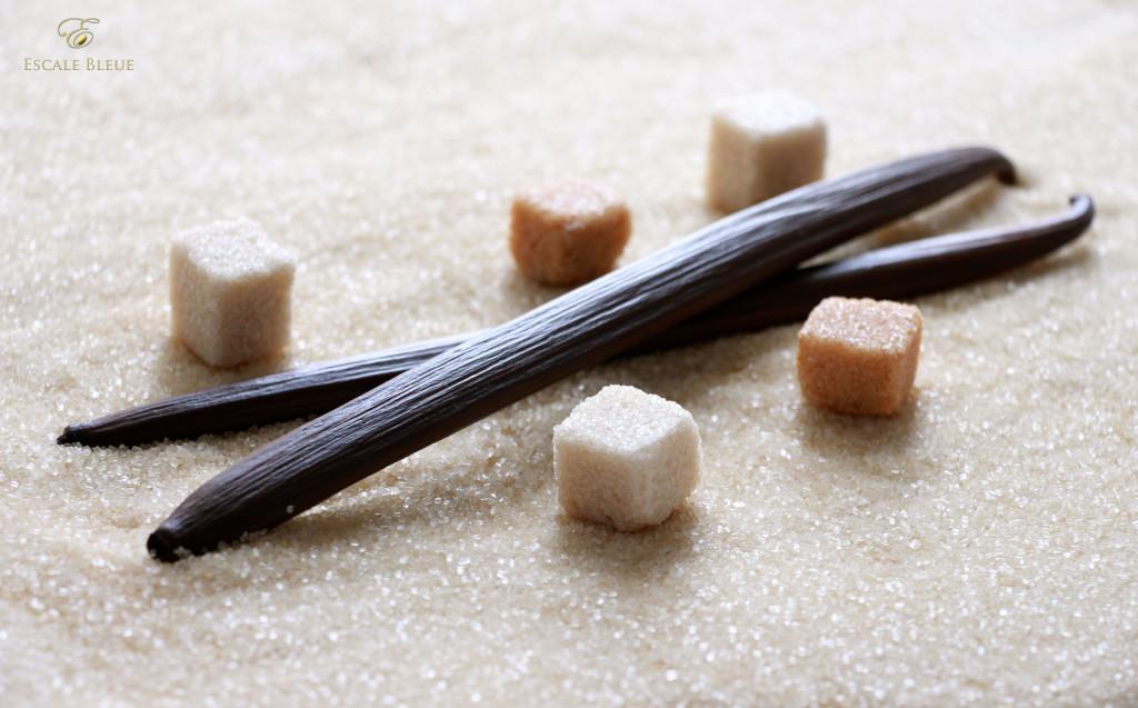 escale bleue vanille sucre 2