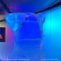 Norwegian Epic - Ice Bar