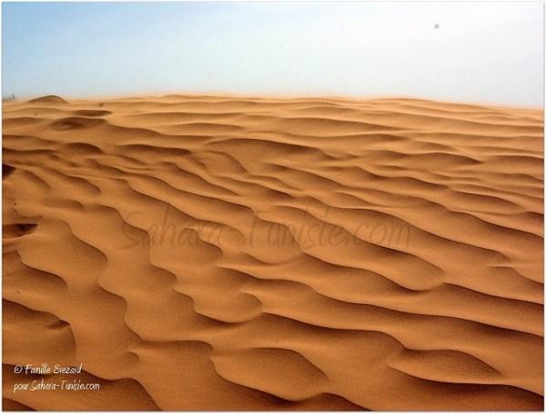 Dans les sables rouges de Ksar Ghilane