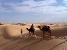 Villages berbères et randonnée chamelière – Circuit 1 semaine