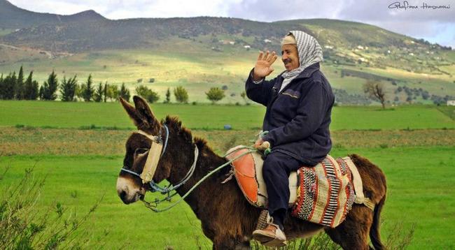 ma tunisie bonjour
