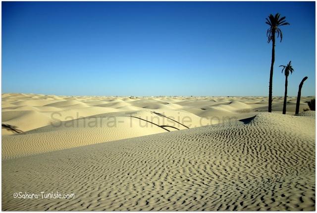 sahara tunisie sable blanc