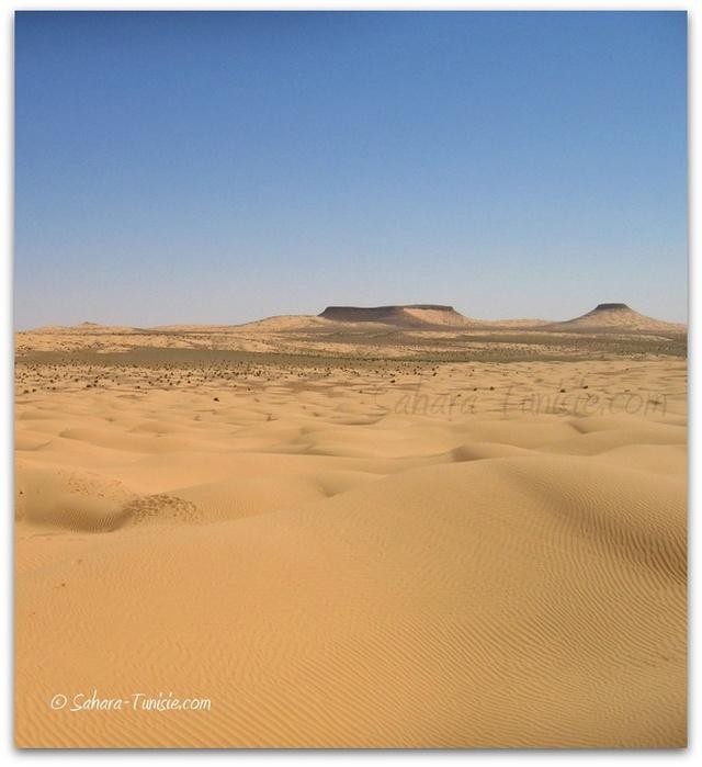 tembain sahara tunisie