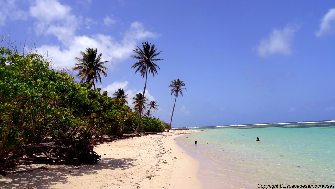#Guadeloupe : nos plages favorites