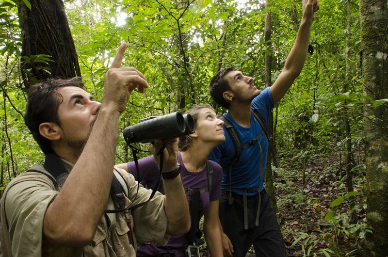 carnets d'exploration natexplorers muséum d'histoire naturelle du havre