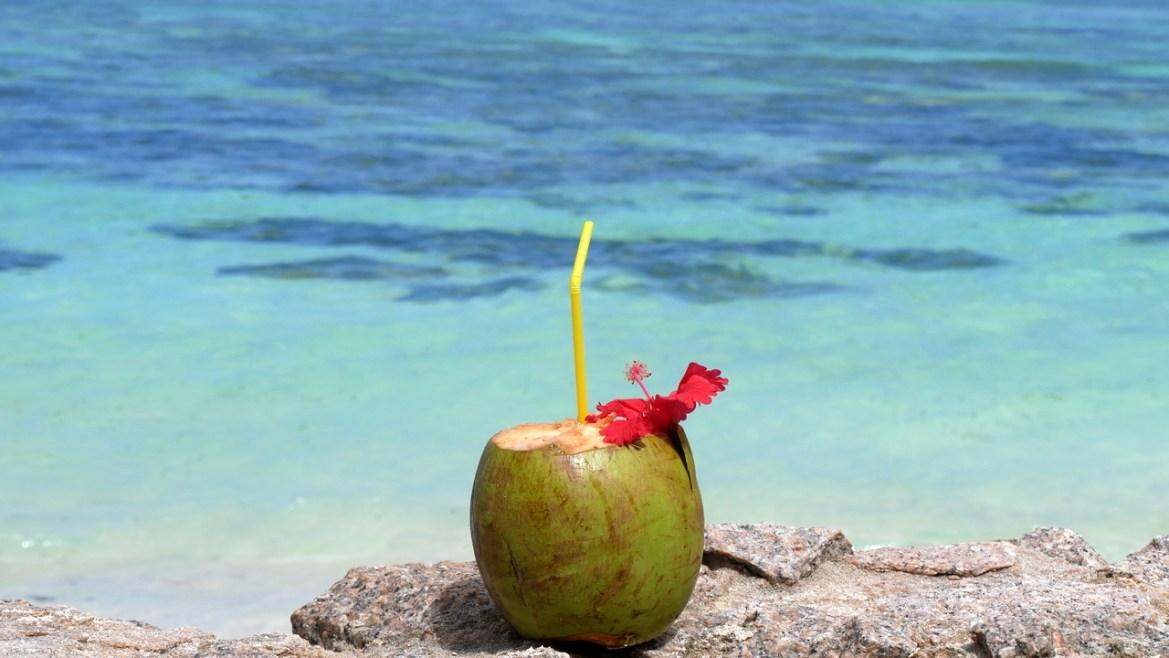 noix de coco Anse source d'argent la digue seychelles escapades amoureuses