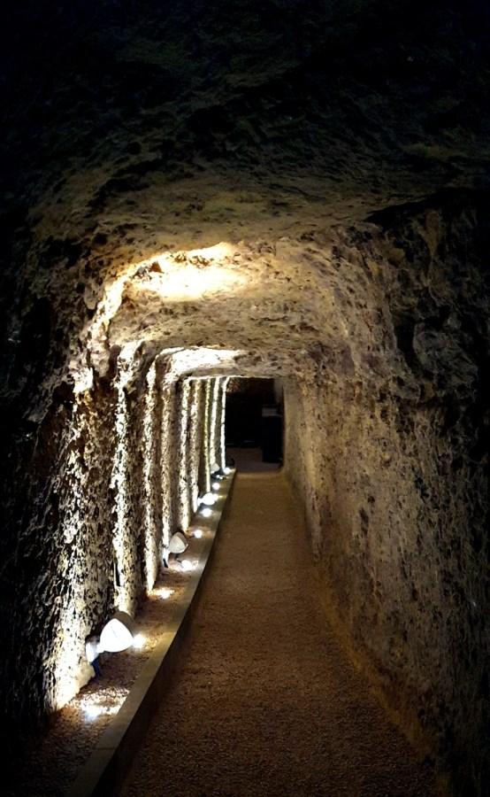 l'odyssée des millesimes aux caves ambacia Amboise