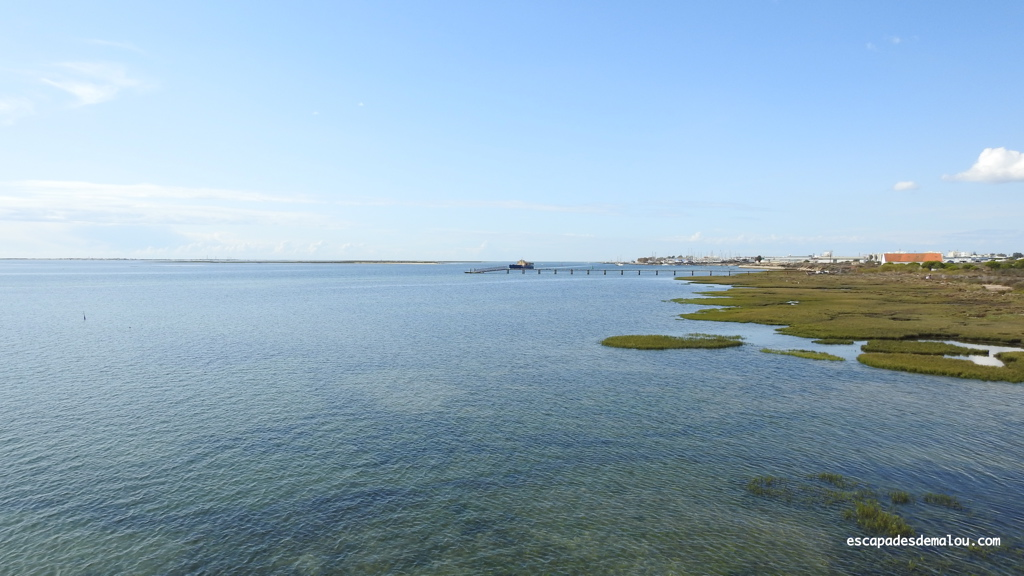 https://escapadesdemalou.com/parc-naturel-de-la-ria-formosa/