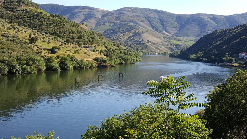 https://escapadesdemalou.com/quels-sont-les-principaux-fleuves-du-portugal/
