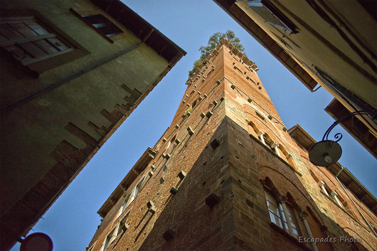 La tour Guinigui : Le temps suspendu