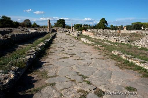 Paestum - Via Sacra