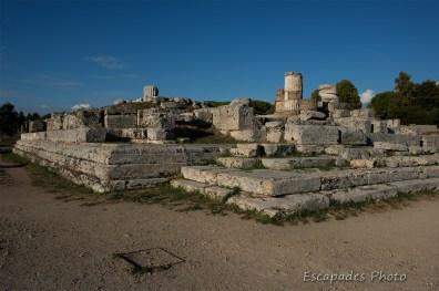 paestum cité grecque - forum