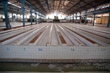 usine caoutchouc chup - Le latex dans les bassins