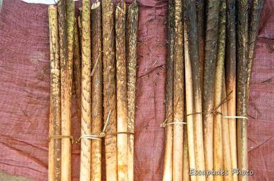 Tiges - usage inconnu - marché de luang namtha