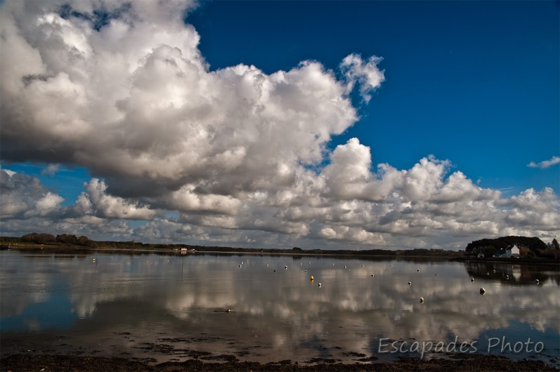 étang de saint-jean à Locoal-Mendon