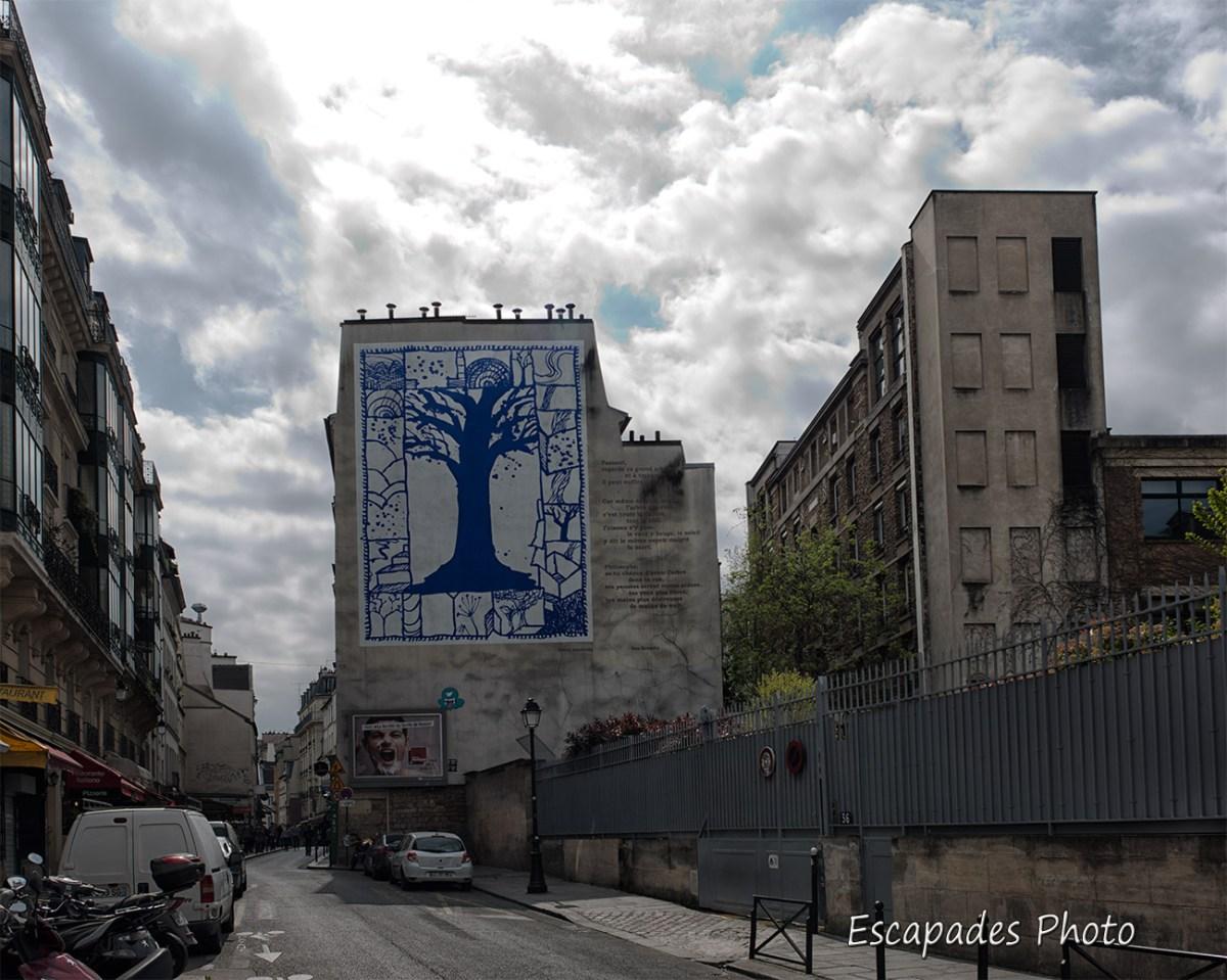L'arbre des rues : Rue Descartes - Paris 5e