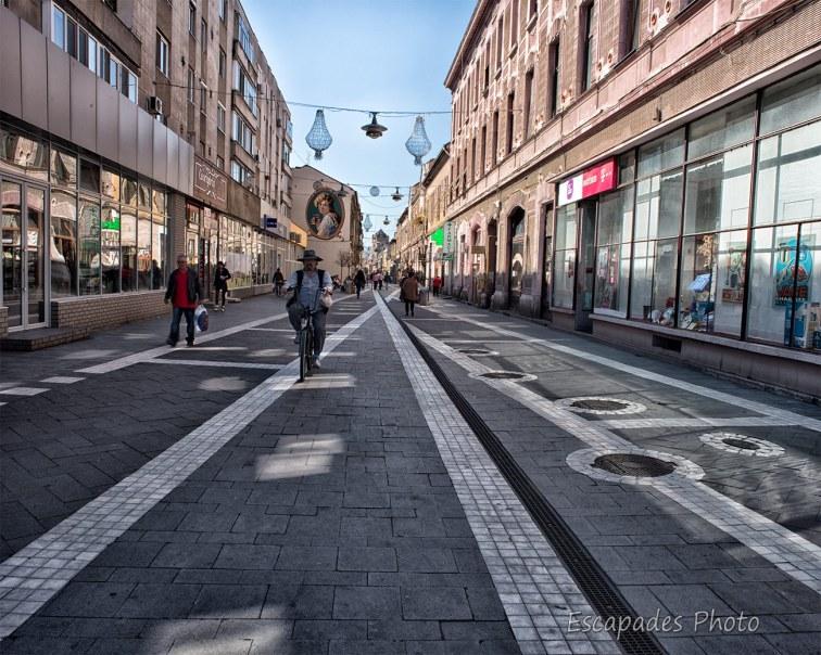 Arad Strada Mețianu à vélo