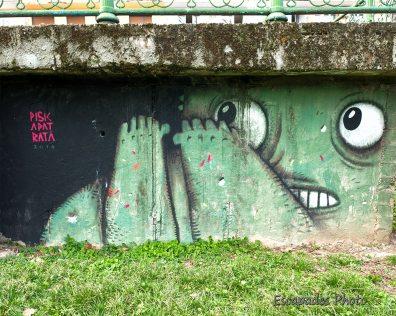 Arad - Art de la rue