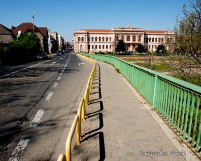 """Colegiul Național """"Moise Nicoară"""