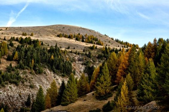 paysage col Toutes Aures
