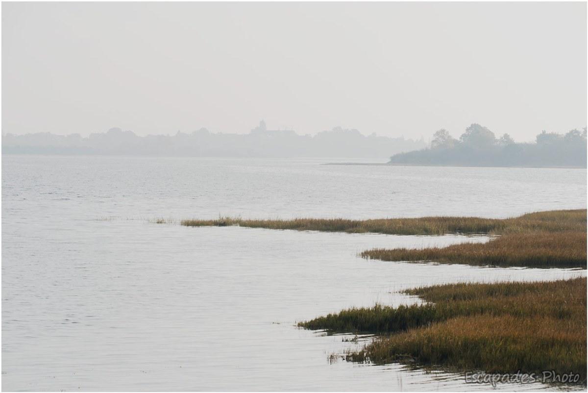 Brouillard sur l'anse de Séné