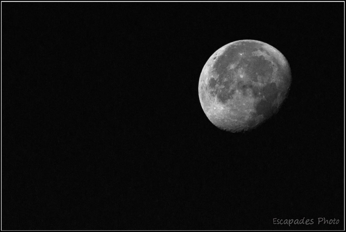 Lune au lever du jour