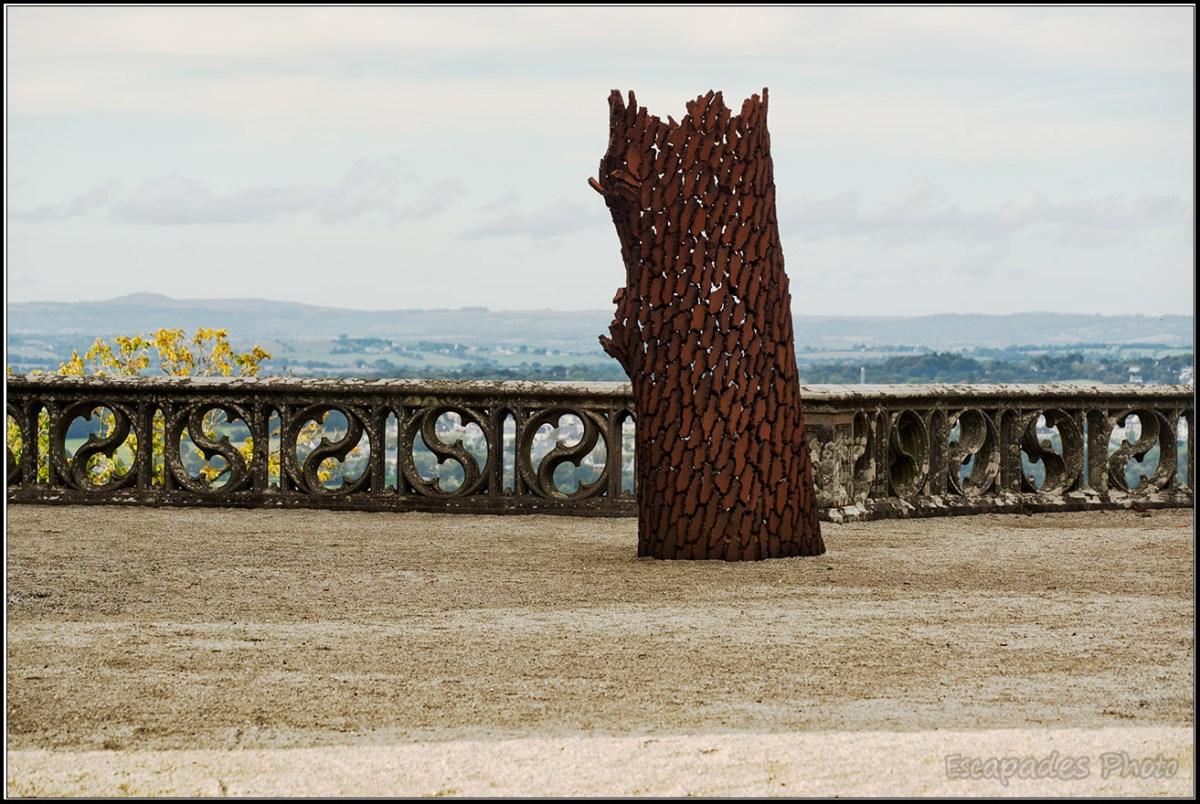 L'arbre vu par le sculpteur Marc Didou