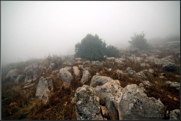 El Torcal de Antequera : Karstique et mystérieux