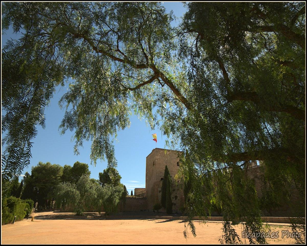 le jardin de l'Alcazaba