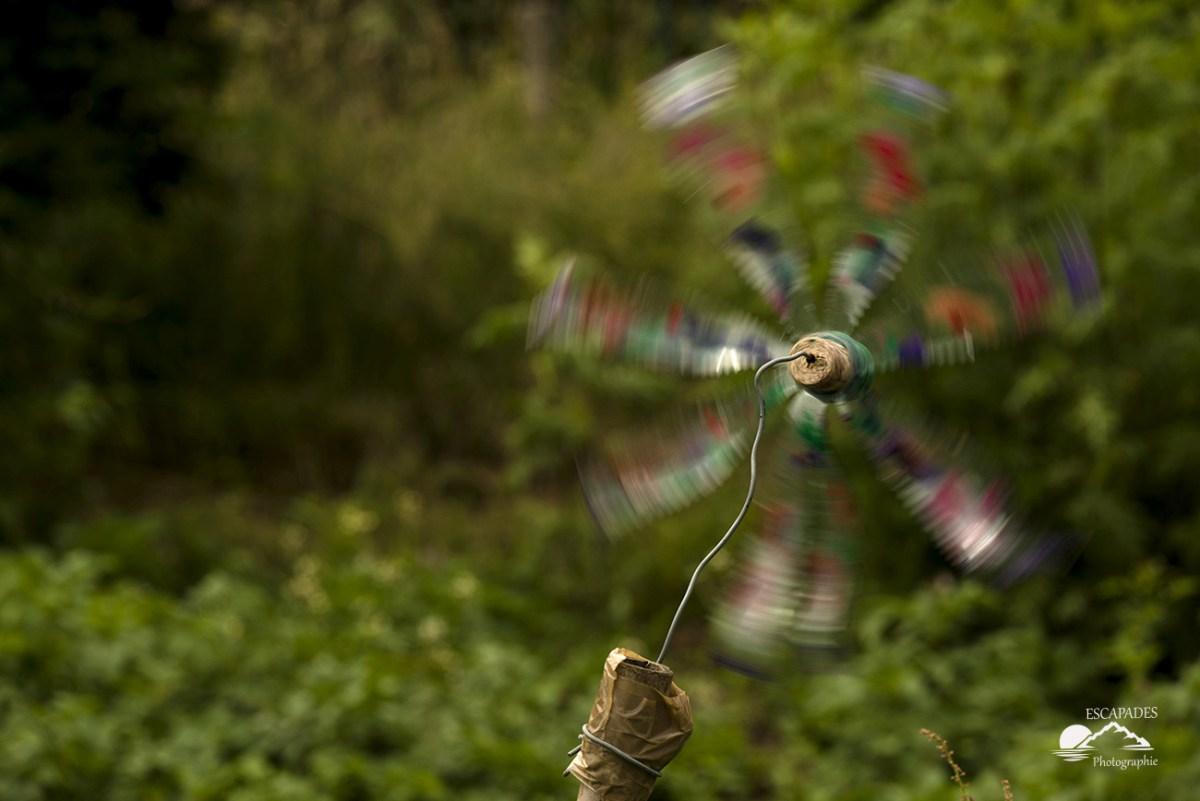 Jardin enchanté, hôtel à insectes, moulins et girouette