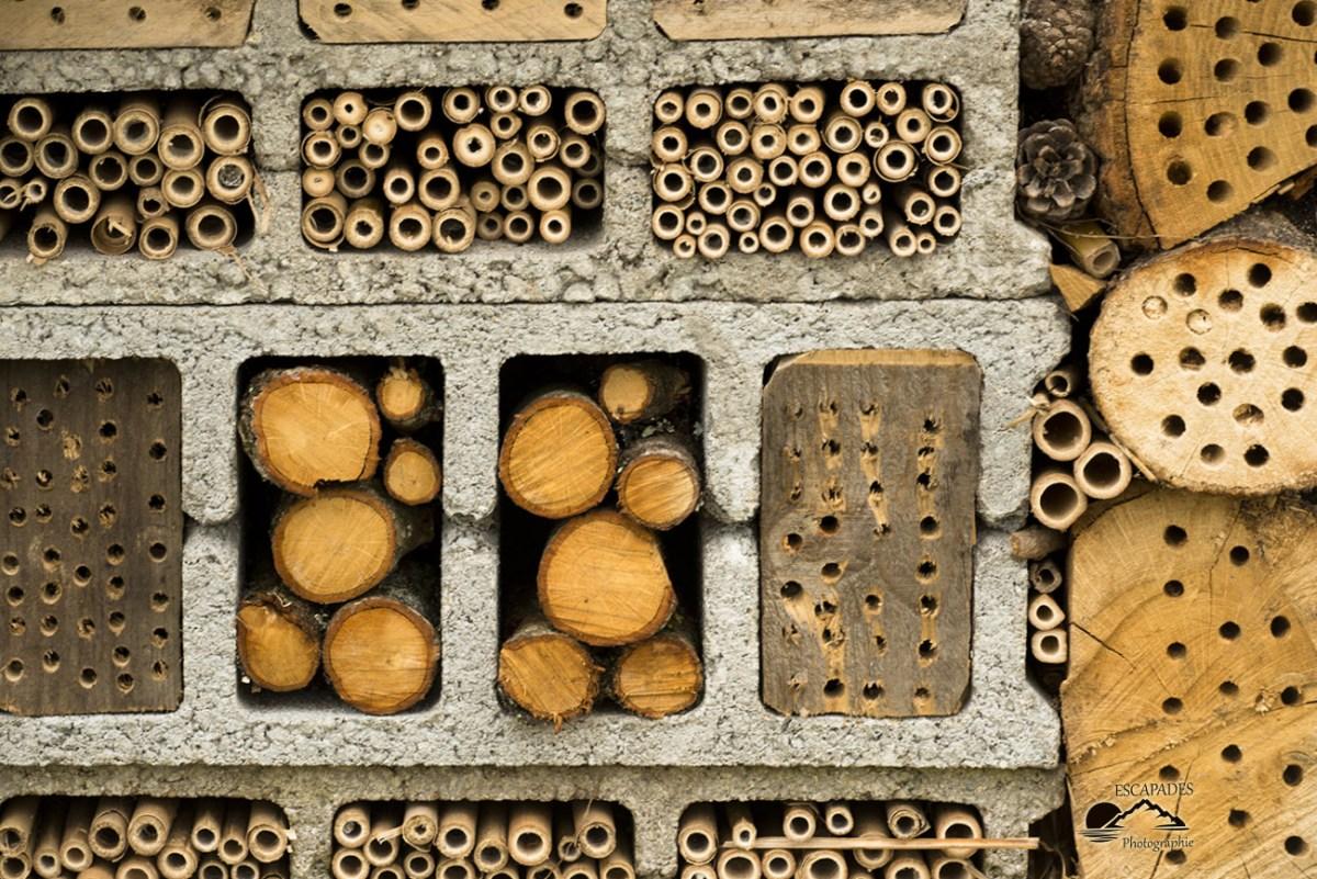 Jardin enchanté, hôtel à insectes