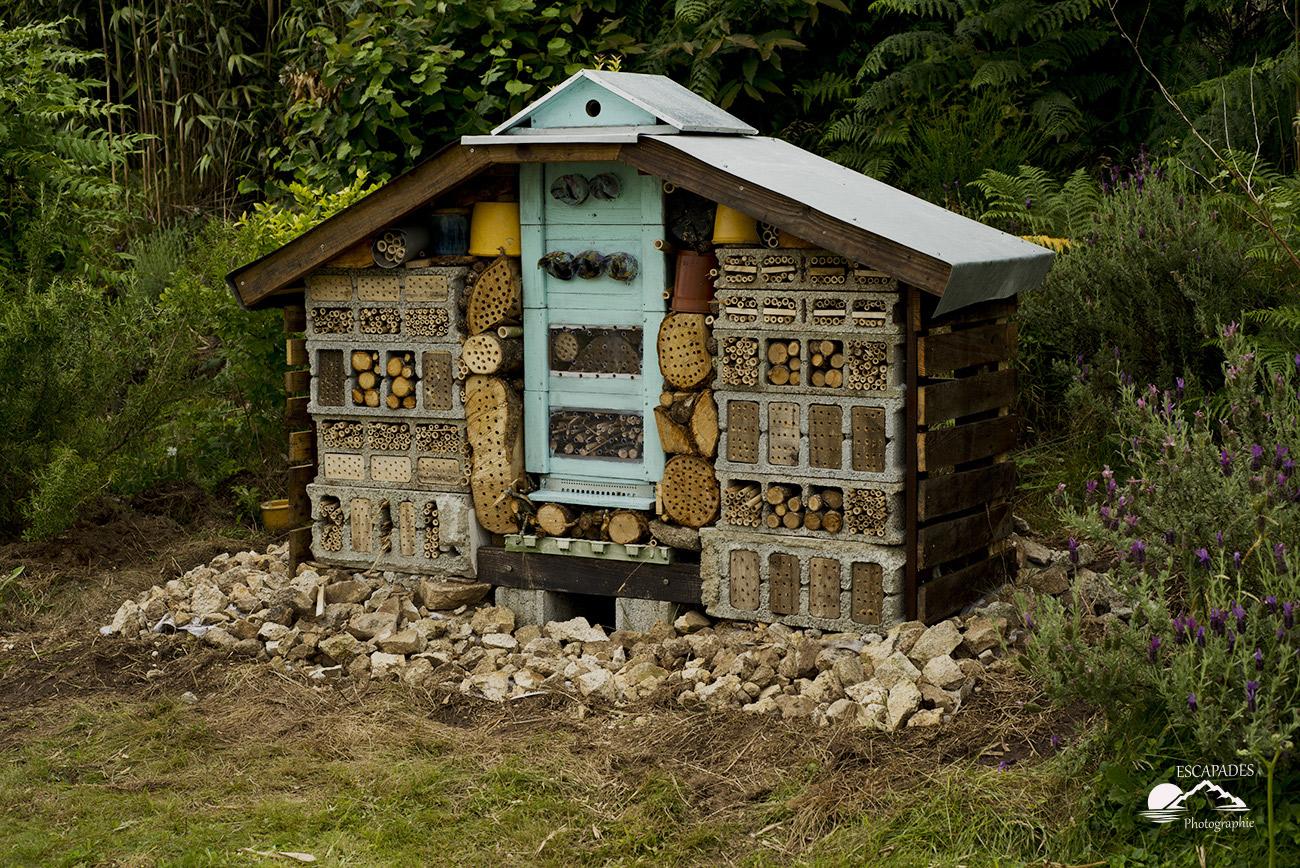 Read more about the article Hôtel à insectes, moulin à vent, girouette au jardin