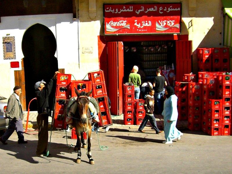 Esel-Transport in Marrakesch