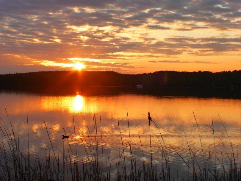 Sonnenaufgang am Templiner See, Potsdam