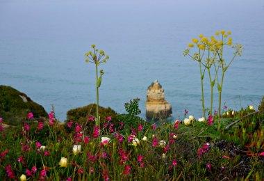 Wanderung an der Algarve bei Lagos