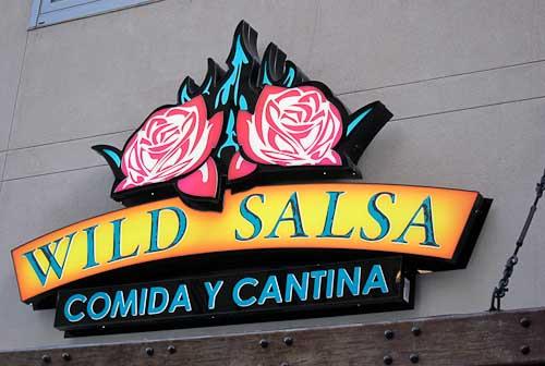 wild_salsa_opening-007