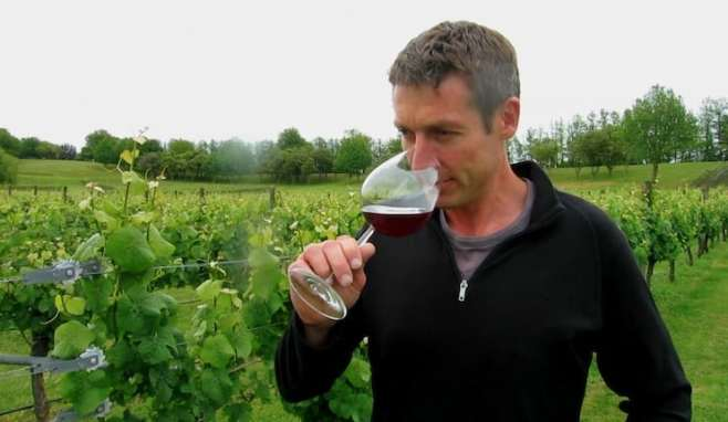 alastair maling mw of new zealand villa maria winery