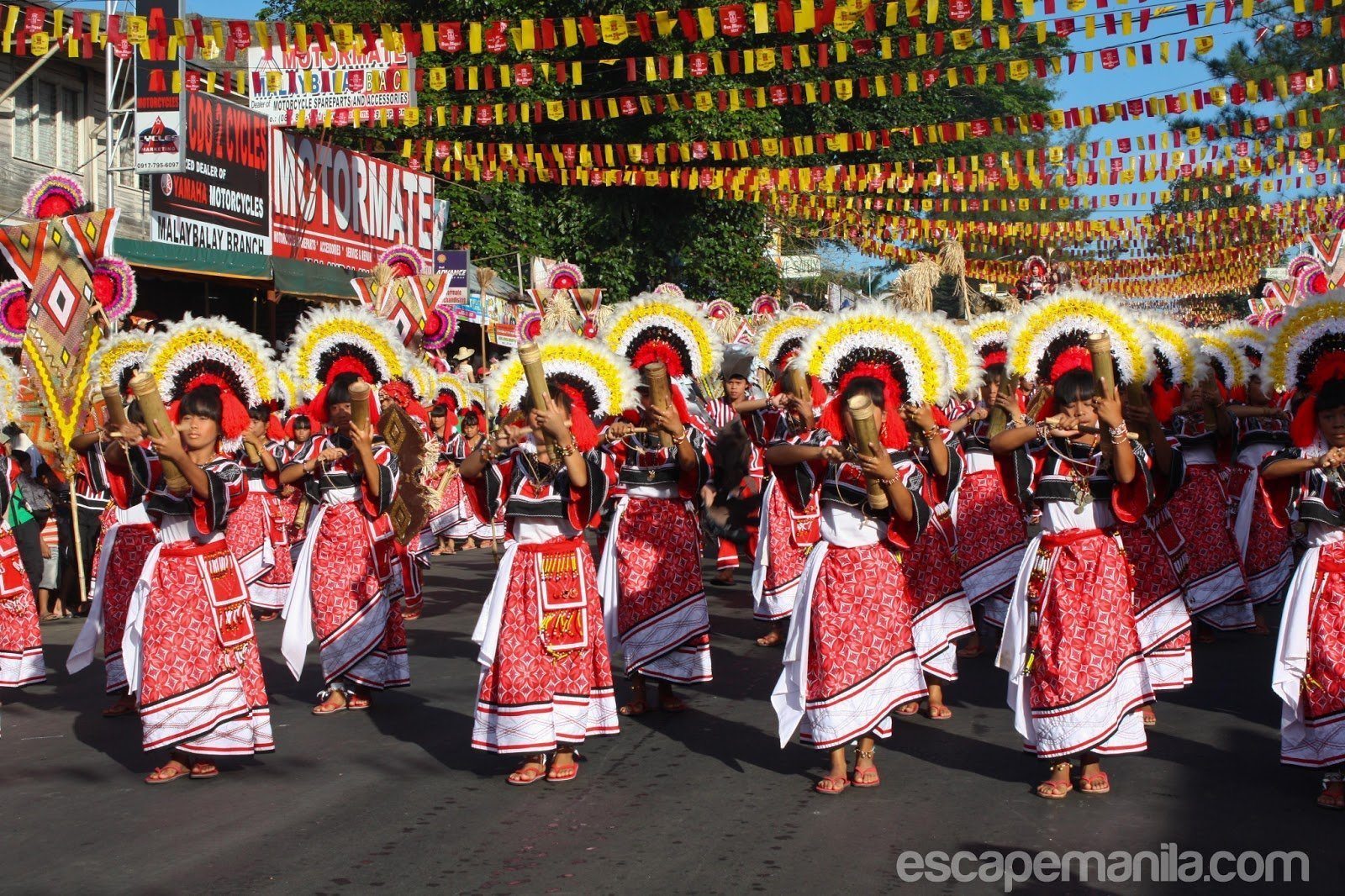 Kaamulan Festival 2019 Schedule of Events and Activities