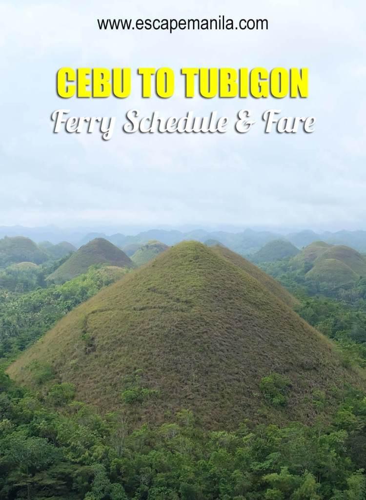 Cebu to Tubigon ferry schedule