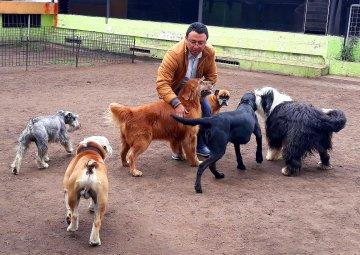 Pablo y los perros de su centro