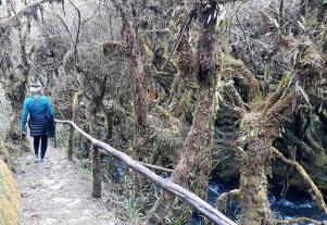 Cascada Milagrosa - ruta de acceso