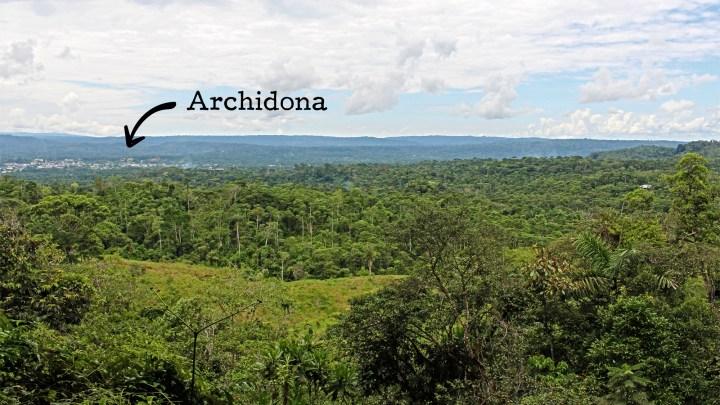 Archidona vista selva
