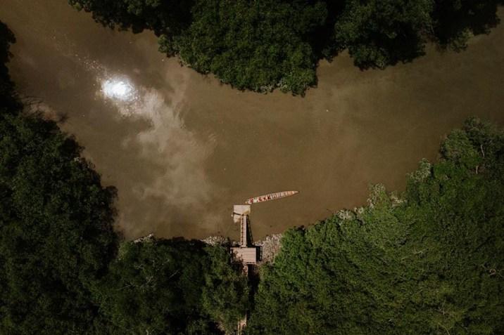 Desde el aire el río es el único claro en el espeso bosque. Foto: Enrique Avilés.