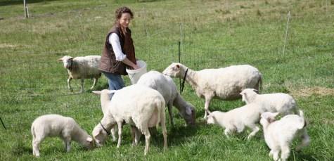 SHEEP_MILK_SOAP_3002