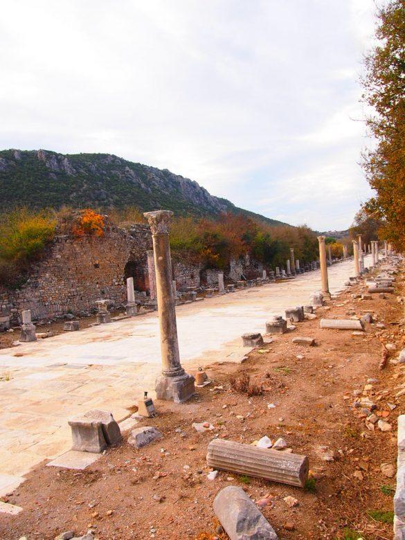 Vía Arcadia Despedida desde Éfeso. Guía de Viaje Turquia