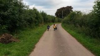 Lane to school now