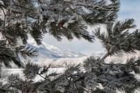 Mt. View Chalet