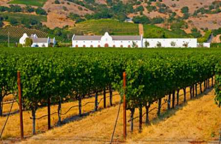 California's wine country