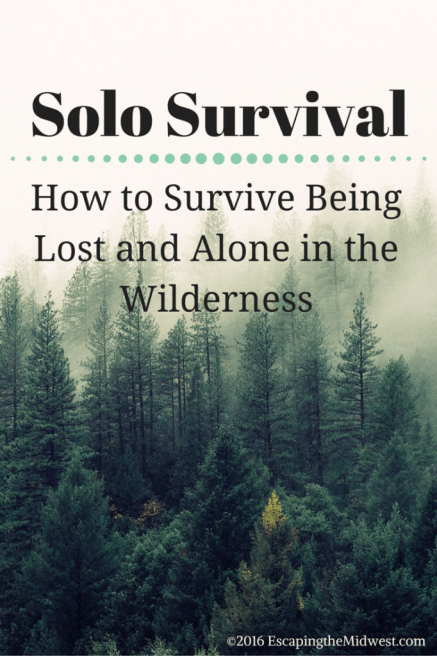 Solo Survival Lost and Alone in the Wilderness