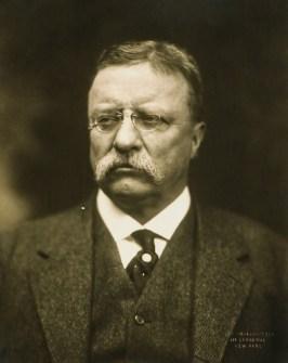 https://en.wikipedia.org/wiki/Theodore_Roosevelt